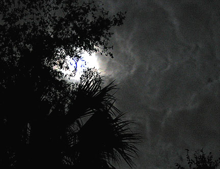 Moon, clouds, trees